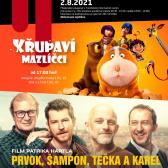 Filmové pondělí v Kulturním centru Harrachov 1